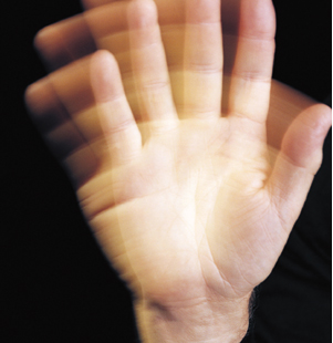 Neuroskeptic's Hand-Waver's Guide to The Brain