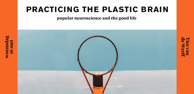 My book 'Practicing the Plastic Brain: popular neuroscience and the good life' now available online